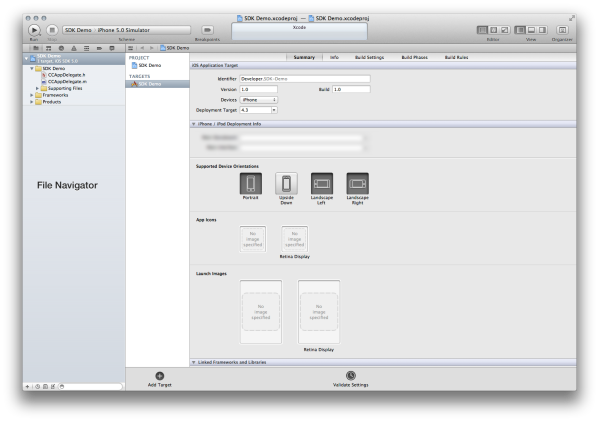 Xcode Main Project Window